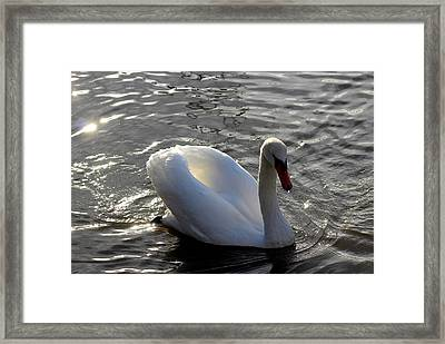 Blessed By Mother Nature Framed Print