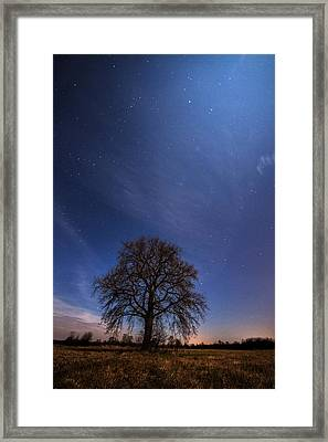 Blessed By The Moon Framed Print by Davorin Mance