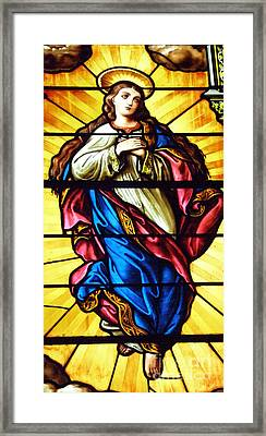 Framed Print featuring the photograph Blessed Mother's Ascention by Debby Pueschel