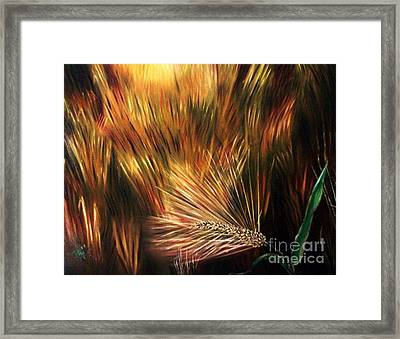 Blessed Seeds Collection - Fields Of Gold Framed Print