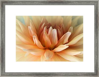 Blessed  Framed Print