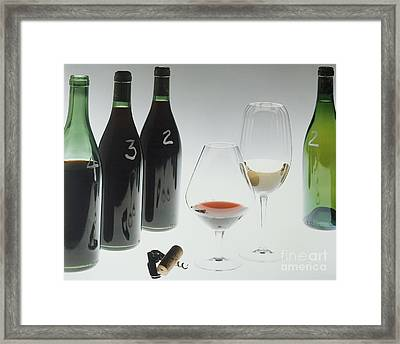 Blind Taste Test Framed Print by Jerry McElroy