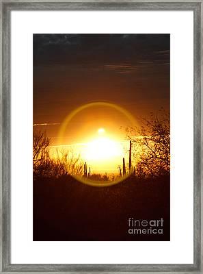 Blinded By The Light Framed Print
