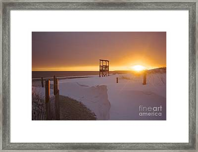 Blinded By The Sun Framed Print by Amazing Jules