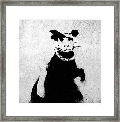 Bling Rat  Framed Print by A Rey