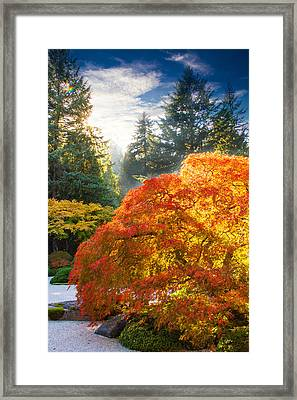 Bliss Framed Print by Kunal Mehra