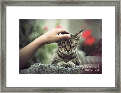 Bliss Number 1 Framed Print by Jasna Buncic