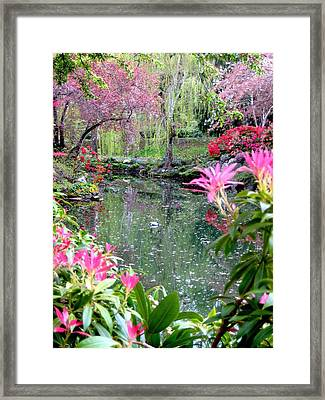 Bliss Framed Print by Shirley Sirois