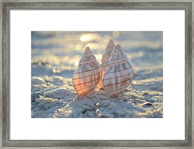 Blissful Framed Print