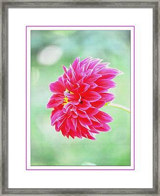 Blissful Moments Framed Print