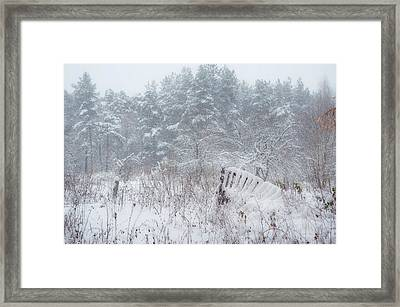 Blizzard In Late Autumn Framed Print by Jenny Rainbow