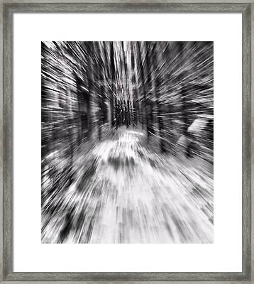 Blizzard In The Forest Framed Print