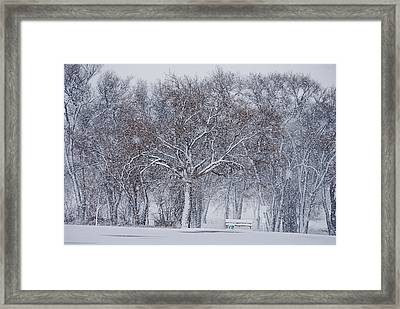 Blizzard In The Park Framed Print by Melany Sarafis