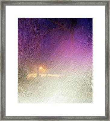 Blizzard Framed Print by Pamela Hyde Wilson