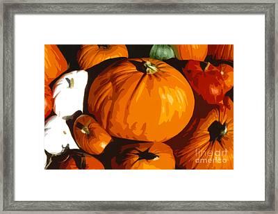 Bloated Pumpkins Framed Print by Debra Orlean