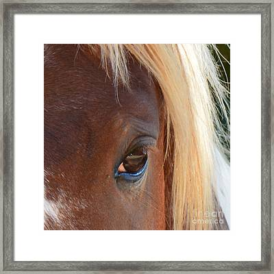 Blondes Do Have More Fun 2 Framed Print by Barbara Dalton