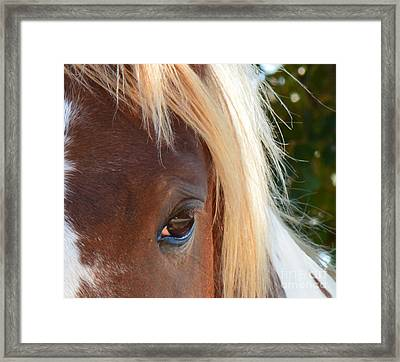 Blondes Do Have More Fun Framed Print by Barbara Dalton