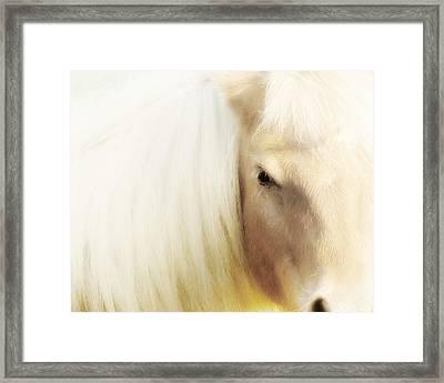 Blondie Framed Print by Amy Tyler
