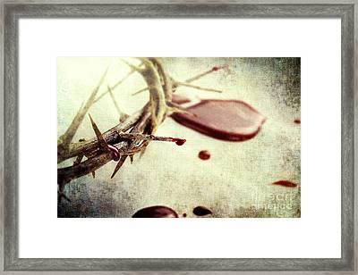 Blood And Thorns Framed Print by Stephanie Frey
