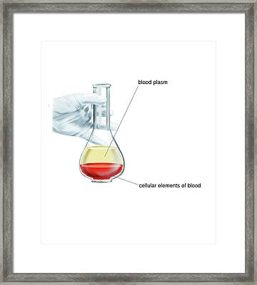 Blood Fractionation Framed Print