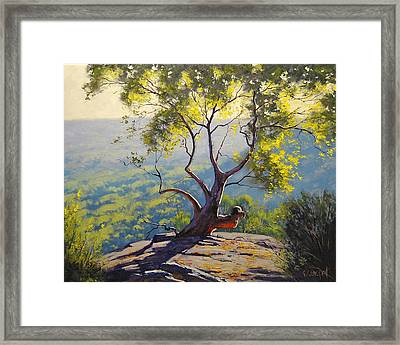 Blood Gum Tree  Framed Print
