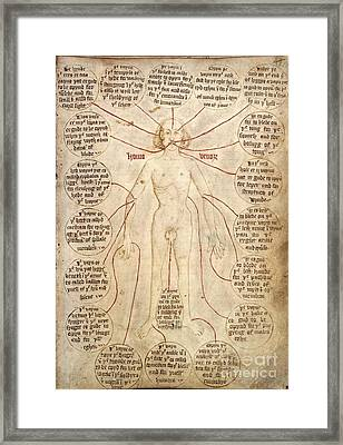 Blood-letting Instructions, 15th Century Framed Print by British Library