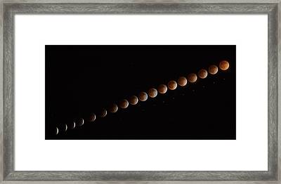 Blood Line Framed Print by Peter Tellone