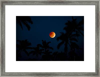 Blood Moon In The Tropics Framed Print by Sean Davey