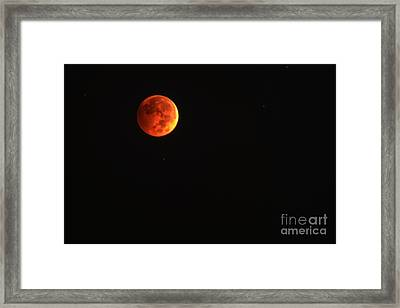 Blood Moon  Framed Print by Thomas R Fletcher