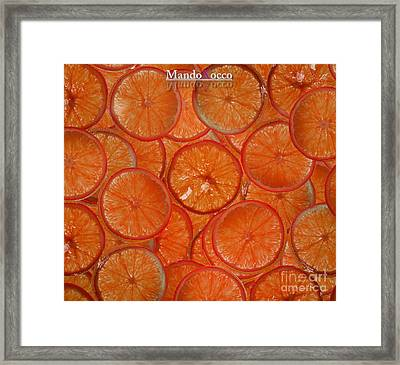 Blood Orange Framed Print