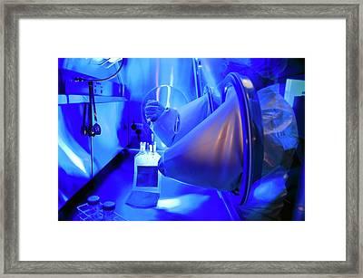 Blood Plasma Research Framed Print by Dan Dunkley