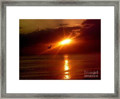 Blood Red Sunset Framed Print by Carla Carson