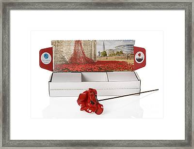 Blood Swept Lands And Seas Of Red Framed Print by Amanda Elwell