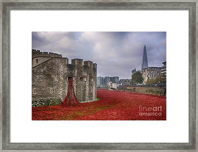 Blood Swept Lands Framed Print