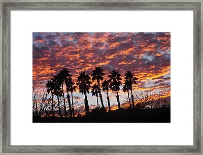 Bloody Sunset Over The Desert Framed Print