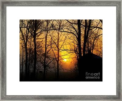 Bloom II Morning Mist Sunrise Framed Print