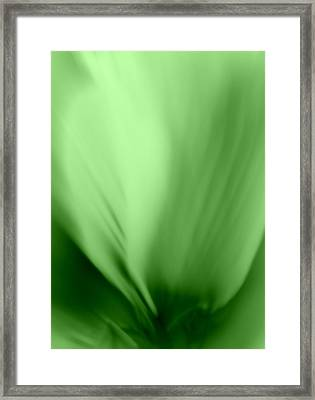 Bloom In Green Framed Print by Mary Beth Landis