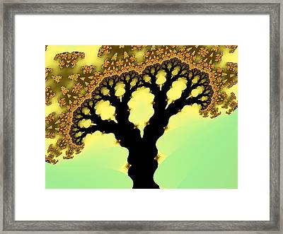 Bloom Framed Print
