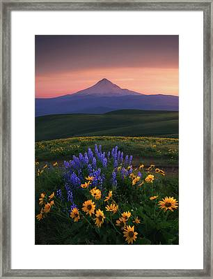 Bloomdido Framed Print