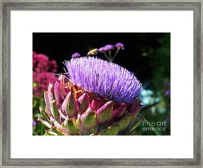 Blooming 'choke Framed Print