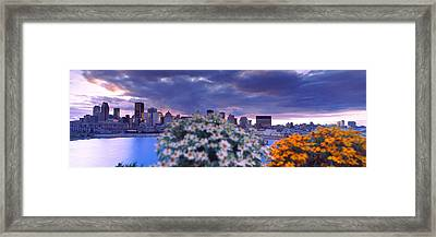 Blooming Flowers With City Skyline Framed Print