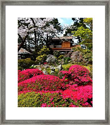 Blooming Gardens 2 Framed Print
