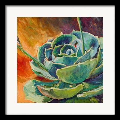 Succulent Framed Prints