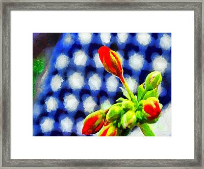 Blooming On The 4th Of July Framed Print
