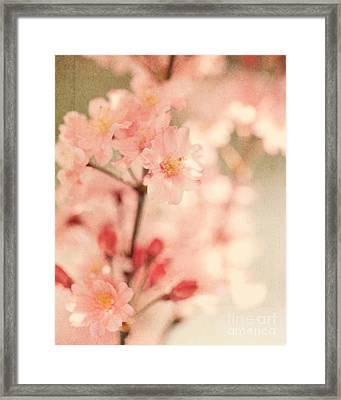 Blooming Season Framed Print by Kim Fearheiley