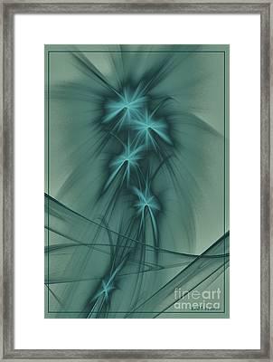 Blooming Stars 2 Framed Print by Elizabeth McTaggart