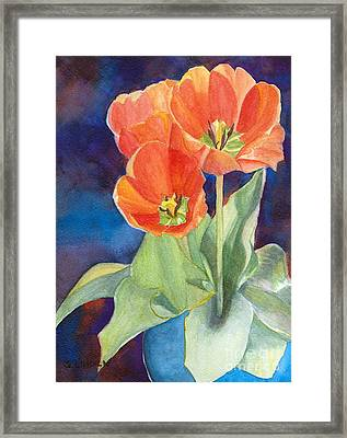 Blooming Tulips Framed Print