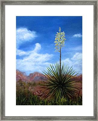 Blooming Yucca Framed Print by Roseann Gilmore