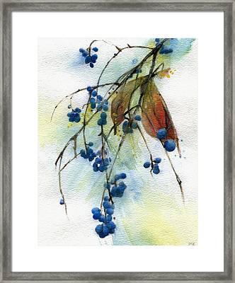 Bloomington Indiana Berries Framed Print by John Christopher Bradley