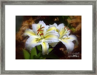 Bloom'n Lilies Framed Print